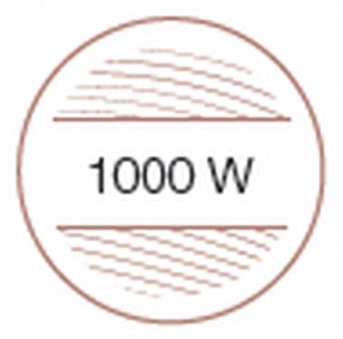 1000 В